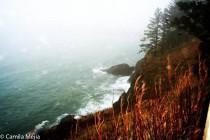 Oregon 2010